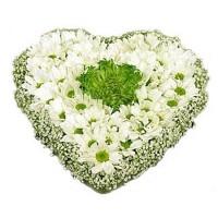 """Цветочное сердце из гипсофилы и хризантем """"Шамрок"""""""