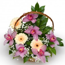 """Корзина из орхидей и гербер """"Бабочки"""""""