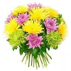 Букет из разноцветной одноголовой  хризантемы