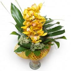Элегантный букет из орхидей (цвет на выбор)