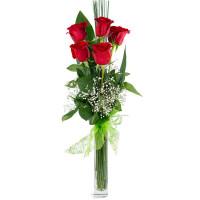 Букет из 5 красных роз с гипсофилой