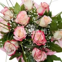 """Букет из 11 двухцветных роз и гипсофилы """"Мальвина"""""""