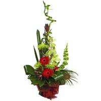 """Бамбук в букете с герберами и орхидеями """"Иноземка"""""""