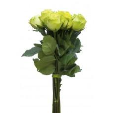 """Букет из 7 зеленых роз """"Мила"""""""