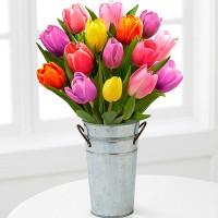 """Букет из 15 тюльпанов в декоративном ведерке """"Ранее утро"""""""
