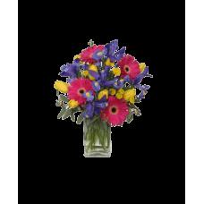 Букет тюльпанов и гербер с ирисами