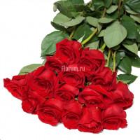 Букет из 15 бордово-красных роз Фридом