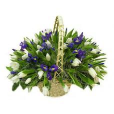 """Корзина из белых тюльпанов и ирисов """"Весна"""""""