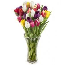 Букет из 25 разноцветных тюльпанов