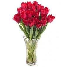 Букет из 27 красных тюльпанов