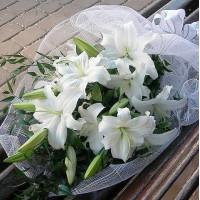Букет из 5 белых или розовых лилий