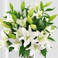 Великолепный букет из белых лилий