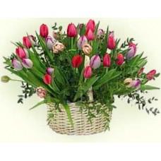 Корзина из 51 разноцветного тюльпана