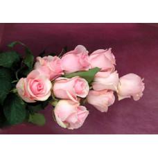 """Розовая роза """"Титаник"""""""