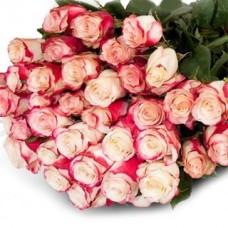 Букет из 15 бело-вишнёвых роз Свитнесс