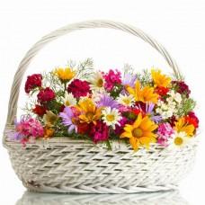 Корзина из 9 разноцветных кустовых хризантем