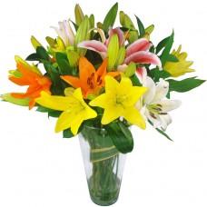 Букет из 5 разноцветных лилий