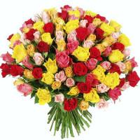Разноцветные европейские розы