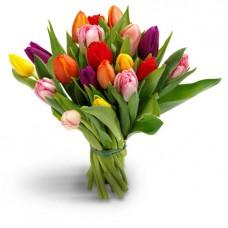 Букет из Тюльпанов (цвет на выбор)